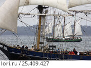 """Купить «Three masted barque """"Earl of Pembroke"""" at the Douarnenez Maritime Festival, France, July 2008», фото № 25409427, снято 6 августа 2020 г. (c) Nature Picture Library / Фотобанк Лори"""