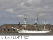 Купить «Statsraad Lehmkuhl at Parade of Sail, Tall Ships 2008, River Mersey, Liverpool», фото № 25411127, снято 5 июля 2020 г. (c) Nature Picture Library / Фотобанк Лори