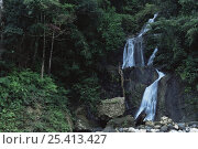 Купить «Waterfall in Sierra Madre National Park, Luzon, Phillipines, September 2001», фото № 25413427, снято 27 мая 2019 г. (c) Nature Picture Library / Фотобанк Лори