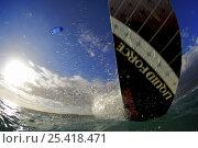 Купить «View from beneath Julie Simsar's kitesurfing board, Puerto Rico 2008», фото № 25418471, снято 6 июля 2020 г. (c) Nature Picture Library / Фотобанк Лори