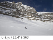 Купить «Snowmobile in the Shoshone National Forest near Dubois, Wyoming, USA, Model released», фото № 25419563, снято 17 ноября 2019 г. (c) Nature Picture Library / Фотобанк Лори