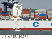 Купить «Container ship at dockyard with small sailing craft in foreground, Felixstowe, Suffolk, England, UK», фото № 25420571, снято 20 августа 2018 г. (c) Nature Picture Library / Фотобанк Лори