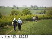 Купить «Walkers in Cotswolds countryside, Lower Slaughter, Gloucestershire, UK», фото № 25422215, снято 21 июля 2018 г. (c) Nature Picture Library / Фотобанк Лори