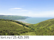 View to Porlock Bay from Minehead hill, Exmoor Somerset, UK, May. Стоковое фото, фотограф Gary Smith / Nature Picture Library / Фотобанк Лори