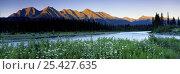 Купить «The Kootenay River and The Rockies, Kootenay National Park, British Columbia, Canada», фото № 25427635, снято 16 декабря 2017 г. (c) Nature Picture Library / Фотобанк Лори