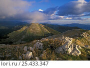 Купить «Sunset view of mountain ridges in the Abruzzo National Park showing the characteristic landscape of the Central Apennines, Italy», фото № 25433347, снято 19 августа 2018 г. (c) Nature Picture Library / Фотобанк Лори