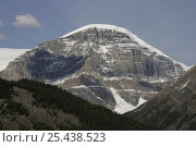 Купить «Canadian Rockies, nr Athabascar / Athabasca Glacier, Jaspar NP, Canada, July 2006», фото № 25438523, снято 17 августа 2018 г. (c) Nature Picture Library / Фотобанк Лори