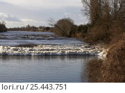 Купить «Spring tidal bore on the River Severn at Minsterworth, also known as the Severn Bore. Gloucestershire, UK.», фото № 25443751, снято 15 августа 2018 г. (c) Nature Picture Library / Фотобанк Лори