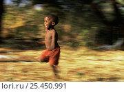 Купить «Hadzabe child running, Lake Eyasi Basin, Tanzania 2006», фото № 25450991, снято 14 ноября 2019 г. (c) Nature Picture Library / Фотобанк Лори