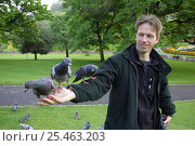 Купить «Feral pigeons / Rock doves {Columba livia} perched on man's arm in city park. Edinburgh, Scotland, UK. Model released.», фото № 25463203, снято 17 октября 2018 г. (c) Nature Picture Library / Фотобанк Лори