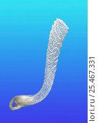 Venus flower basket sponge {Euplectella aspergillum} skeleton. Стоковое фото, фотограф Kim Taylor / Nature Picture Library / Фотобанк Лори