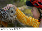 Купить «Child with Ural owl {Strix uralensis}, Vastmanland, Sweden.», фото № 25469287, снято 17 января 2019 г. (c) Nature Picture Library / Фотобанк Лори