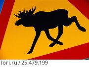 Купить «Moose warning road sign, Sweden.», фото № 25479199, снято 18 января 2019 г. (c) Nature Picture Library / Фотобанк Лори
