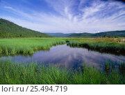Купить «Lake Baikal, eastern shore, Russia», фото № 25494719, снято 24 августа 2019 г. (c) Nature Picture Library / Фотобанк Лори