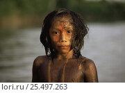 Купить «Portrait of Kayapo indian boy with body painted using plant dye, Amazon Basin, Brazil», фото № 25497263, снято 10 апреля 2020 г. (c) Nature Picture Library / Фотобанк Лори