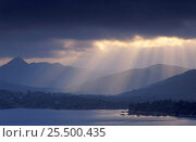 Купить «Dark clouds with shafts of sunlight hitting the water, Bantry Bay, South Ireland», фото № 25500435, снято 28 мая 2018 г. (c) Nature Picture Library / Фотобанк Лори