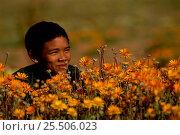 Купить «Child with Namaqualand daisies Namaqualand, South Africa», фото № 25506023, снято 19 июня 2019 г. (c) Nature Picture Library / Фотобанк Лори