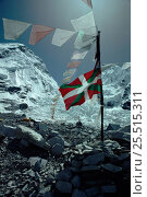 Купить «Prayer flags at base camp, Mount Everest, Nepal», фото № 25515311, снято 6 августа 2020 г. (c) Nature Picture Library / Фотобанк Лори