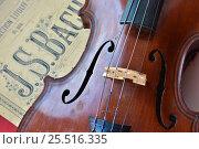 Купить «Немецкая скрипка лежит на нотах Баха», фото № 25516335, снято 15 марта 2015 г. (c) Сергей Дрозд / Фотобанк Лори