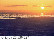 Купить «Sunset over ice filled ocean, St Mary's Islands, Newfoundland, Canada», фото № 25530527, снято 24 сентября 2018 г. (c) Nature Picture Library / Фотобанк Лори