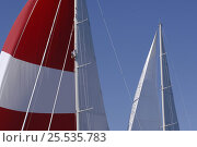 """Купить «Top of the main mast of superyacht """"Adele"""". ^^^ Adele is a 180-foot Andre Hoek designed yacht, built by Vitters Shipyard, Holland, and owned by Jan-Eric Osterlund. Non editorial uses must be cleared individually.», фото № 25535783, снято 19 января 2020 г. (c) Nature Picture Library / Фотобанк Лори"""