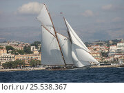 Купить «Classic yacht during Cannes Royal Regatta, France, 2007. All non-editorial uses must be cleared individually.», фото № 25538367, снято 16 июля 2018 г. (c) Nature Picture Library / Фотобанк Лори