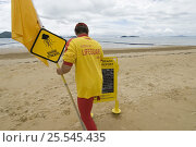 Купить «Lifeguard on beach with sign and flag warning people of Jellyfish, next to stinger-resistant enclosure, Queensland, Australia 2006», фото № 25545435, снято 16 января 2018 г. (c) Nature Picture Library / Фотобанк Лори