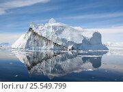 Купить «Icebergs showing dark seam caused by the refreezing of melted ice, off the Antarctic Peninsula, Antarctica, February 2009, Taken on location for BBC Frozen Planet series», фото № 25549799, снято 23 июля 2018 г. (c) Nature Picture Library / Фотобанк Лори