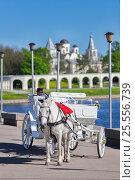 Купить «Карета с белой лошадью на Кремлевском мосту на фоне Ярославово Дворища», эксклюзивное фото № 25556739, снято 12 мая 2016 г. (c) Александр Гаценко / Фотобанк Лори
