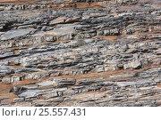 Купить «Каменное русло горной реки», фото № 25557431, снято 14 августа 2016 г. (c) Евгений Рашевский / Фотобанк Лори