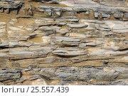 Купить «Каменное русло горной реки», фото № 25557439, снято 14 августа 2016 г. (c) Евгений Рашевский / Фотобанк Лори