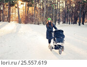 Купить «Woman with stroller going for a walk in a park during lovely winter afternoon», фото № 25557619, снято 30 ноября 2015 г. (c) Валерия Потапова / Фотобанк Лори