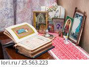 Купить «Молитвослов перед образами», эксклюзивное фото № 25563223, снято 12 февраля 2017 г. (c) Короленко Елена / Фотобанк Лори