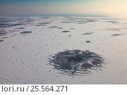 Васюганские болота зимой, вид сверху. Стоковое фото, фотограф Владимир Мельников / Фотобанк Лори