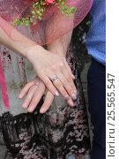 Руки молодоженов с обручальными кольцами. Стоковое фото, фотограф Kostin sergey aleksandrovich / Фотобанк Лори