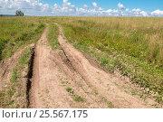Купить «Проселочная дорога - колея через поле летом», фото № 25567175, снято 3 августа 2016 г. (c) Pukhov K / Фотобанк Лори