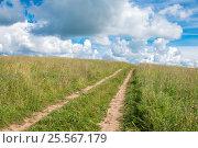 Купить «Проселочная дорога - колея через поле летом», фото № 25567179, снято 3 августа 2016 г. (c) Pukhov K / Фотобанк Лори