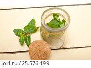 Купить «fresh mint leaves on a glass jar», фото № 25576199, снято 8 февраля 2017 г. (c) Francesco Perre / Фотобанк Лори