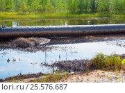 Разлив нефти. Стоковое фото, фотограф Икан Леонид / Фотобанк Лори