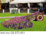 Купить «Оригинальная клумба в виде тележки с цветами в городе Геленджик», фото № 25577411, снято 13 июня 2016 г. (c) Артём Крылов / Фотобанк Лори