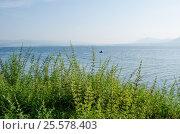 Одинокий рыбак на озере Большом. Стоковое фото, фотограф Олег Брагин / Фотобанк Лори