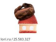 Купить «Домик в шапке-ушанке. Теплый дом», фото № 25583327, снято 11 февраля 2017 г. (c) Наталья Осипова / Фотобанк Лори