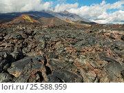 Купить «Lava field at Tolbachik volcano, after eruption in 2012 on background Plosky Tolbachik volcano, Klyuchevskaya Group of Volcanoes», фото № 25588959, снято 21 августа 2016 г. (c) Юлия Машкова / Фотобанк Лори