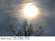 Затмение 2015. Стоковое фото, фотограф Лилия Пономарева / Фотобанк Лори