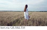 Купить «Beautiful girl in summer field», видеоролик № 25592731, снято 6 декабря 2016 г. (c) Raev Denis / Фотобанк Лори