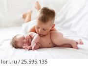 Купить «Маленький мальчик разглядывает свою новорожденную сестру», фото № 25595135, снято 10 июля 2015 г. (c) 1Andrey Милкин / Фотобанк Лори