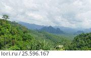 Купить «Rainforest of Khao Sok National Park in Thailand», видеоролик № 25596167, снято 7 февраля 2017 г. (c) Михаил Коханчиков / Фотобанк Лори