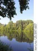 Купить «Beautiful summer landscape», фото № 25597607, снято 3 июля 2014 г. (c) Сергей Девяткин / Фотобанк Лори