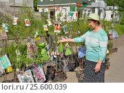 Купить «Пожилая женщина рассказывает о саженцах плодовых деревьев на рынке», фото № 25600039, снято 29 мая 2016 г. (c) Максим Мицун / Фотобанк Лори