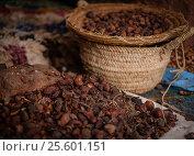 Купить «Seeds of moroccan argan tree on a market», фото № 25601151, снято 11 февраля 2017 г. (c) Andrejs Pidjass / Фотобанк Лори